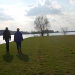Spaziergang bei Hochwasser
